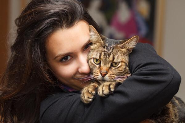 Animal Medical of Chesapeake, Battlefield Blvd, Chesapeake, Va 23320 offers cat cuddles